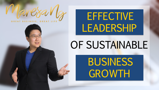 Effective Leadership of Sustainable Business Growth E-Book